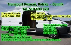 Transport Przeprowadzki Poznań Okolice